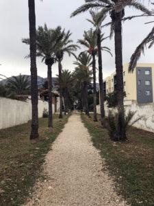Campingplatz Los Pinos