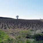 Weinverkostung im Rioja
