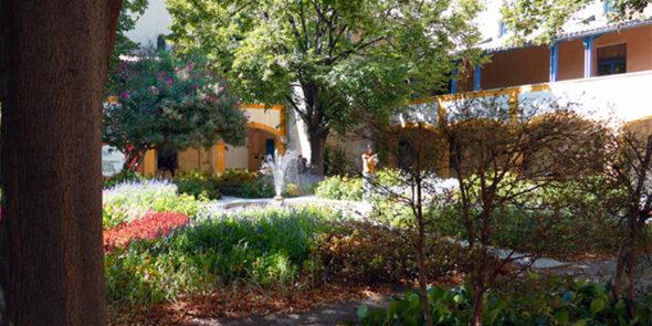 Van Gogh - Garten des Hospitals von Arles