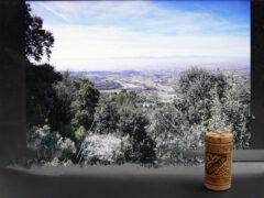 Rioja - Korken