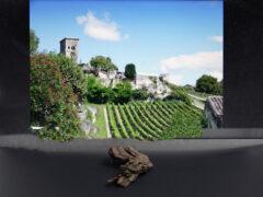 Bordeaux Weinrinde