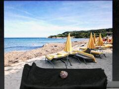 Saint Tropez - Schnecke